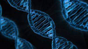 DNA, Genes