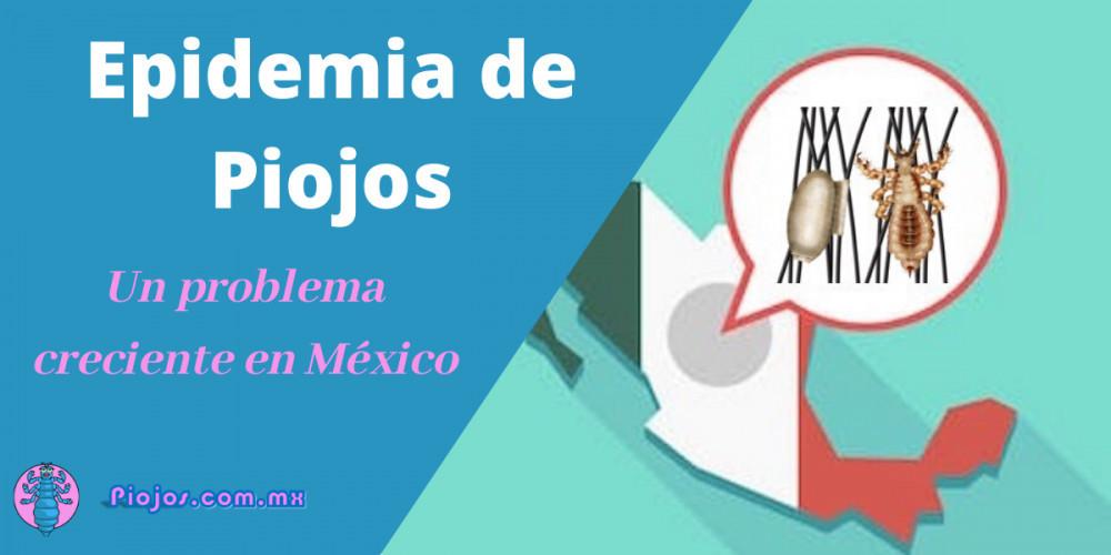 Epidemia de Piojos - Un problema creciente en Mexico